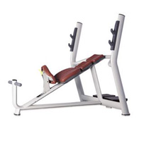 h-025a-incline-bench-luxury